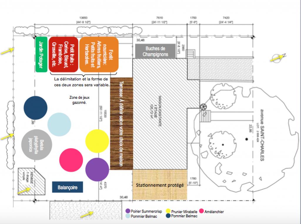 Plan préliminaire d'aménagement du jardin.